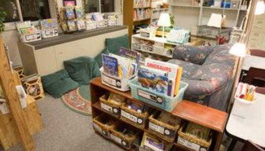 Classroom Library Makeover—Organization, Tubs, and Labels
